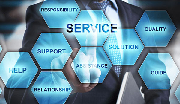 Professional-Support-Services-1